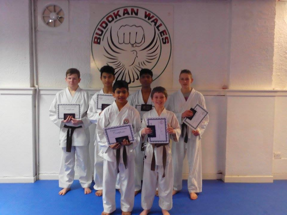 brown belt grading budokan wales