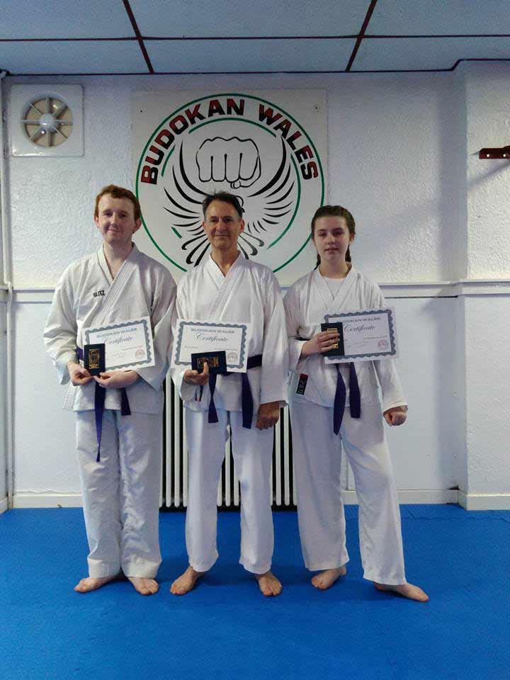 karate-brown1